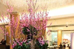 bcna-pink-lady-luncheon-sydney-7